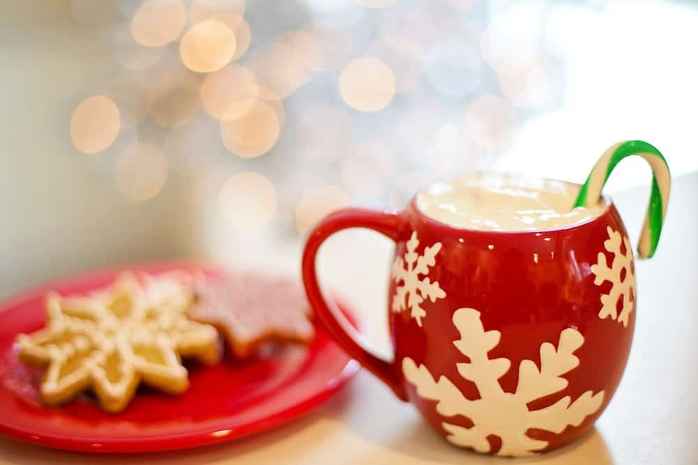 The Vegan Guide to Dairy-Free Eggnog and Winter Holiday Drinks