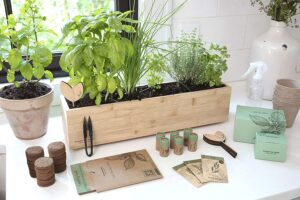 seed planting gifts for employees