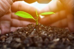 earth day sustainable tips
