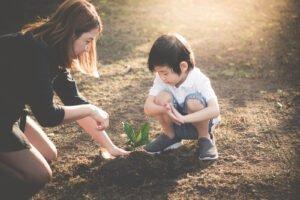 kid planting a tree in soil