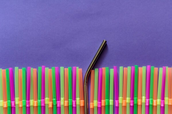 reusable straws and sustainability